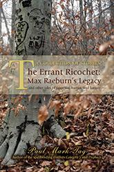 Errant Ricochet cover
