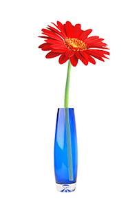 decorative daisy in vase