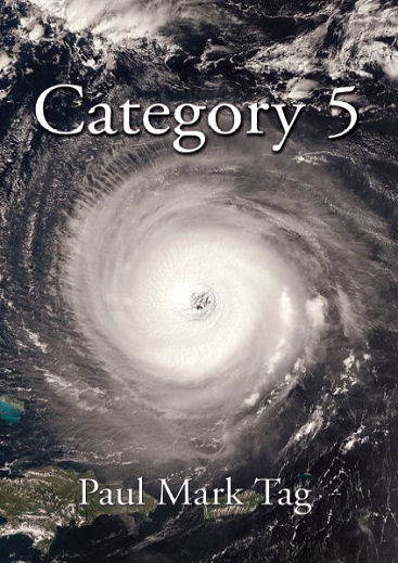 Category 5 Cover